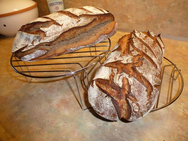 Brot Seitlich Stark Aufgerissen Brotbackforum Die Hobbybäckerei